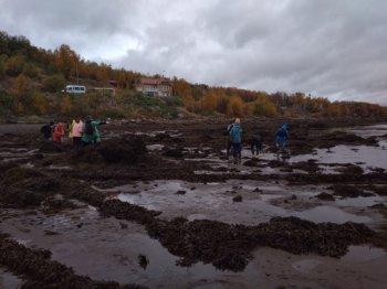 Всероссийский слет юных экологов