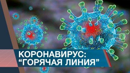 Короновирусная инфекция. Горячая линия